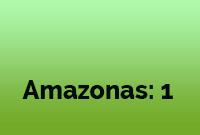 Gestió Y Acción - Cobertura Amazonas