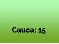 Gestión Y Acción - Cobertura Cauca